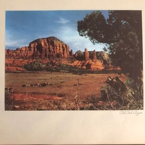 Vintage Oak Creek Canyon Arizona Landscape print
